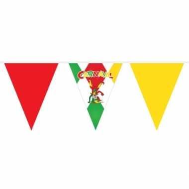 Carnaval versiering vlaggenlijn meter