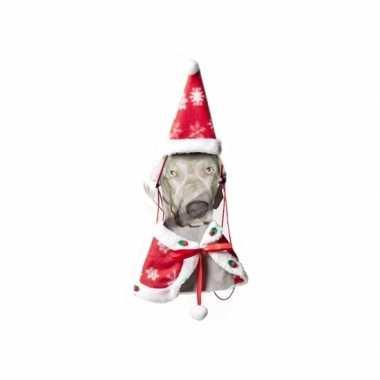 Kerstcarnavalspak hond cape muts