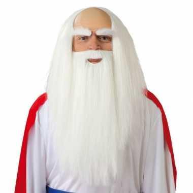 Tovenaarspruik halloween carnaval baard heren
