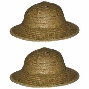 X stuks safarihoed stro carnaval verkleed hoeden