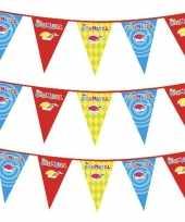 X plastic carnaval vlaggenlijnen 10154553