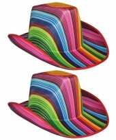 X stuks gekleurde gestreepte carnaval cowboyhoed 10296340